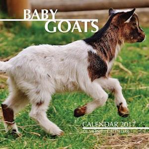 Bog, paperback Baby Goats Calendar 2017 af David Mann