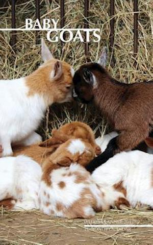 Baby Goats Weekly Planner 2017