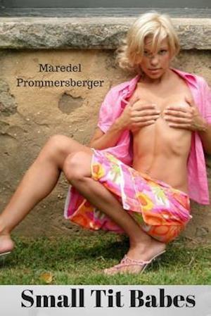 Bog, paperback Small Tit Babes af Maredel Prommersberger