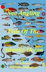 Sea Angling Fish of the Atlantic Ocean