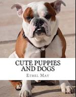 Cute Puppies and Dogs