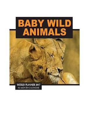 Bog, paperback Baby Wild Animals Weekly Planner 2017 af David Mann