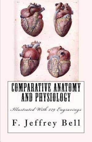 Bog, paperback Comparative Anatomy and Physiology af F. Jeffrey Bell