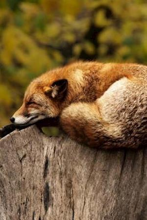 Bog, paperback A Fox Resting on Top of a Log af Unique Journal