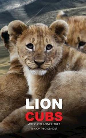 Lion Cubs Weekly Planner 2017