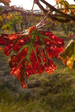 Red Vineyard Leaf in Autumn Journal