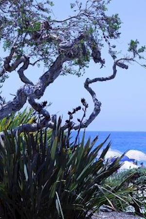 Bog, paperback A View of the Ocean Through the Trees in California Journal af Cs Creations
