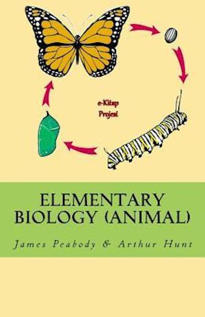 Bog, paperback Elementary Biology (Animal) af Arthur Ellsworth Hunt, James Edward Peabody