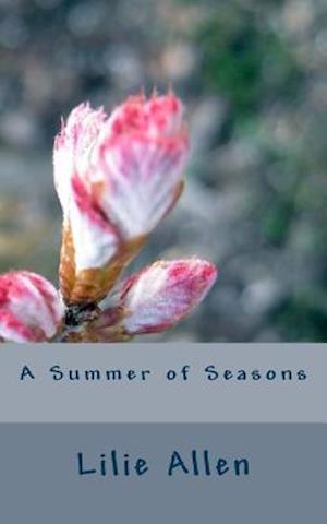 Bog, paperback A Summer of Seasons af Lilie Allen