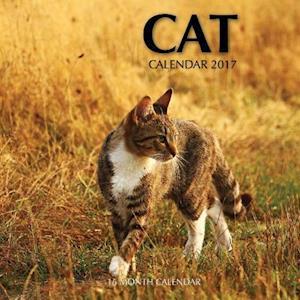 Bog, paperback Cat Calendar 2017 af David Mann