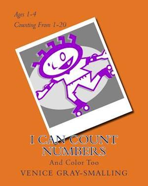 I Can Count Numbers