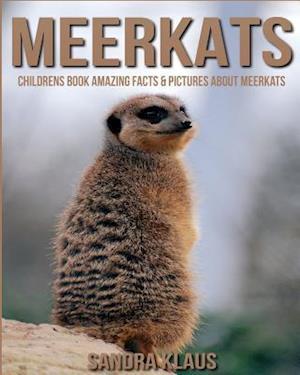 Bog, paperback Childrens Book af Sandra Klaus