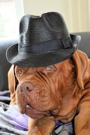 Bog, paperback Hipster French Mastiff Dog Journal af Cs Creations
