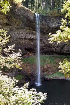 Bog, paperback Website Password Organizer Silver Creek Falls in Oregon af Unique Journal