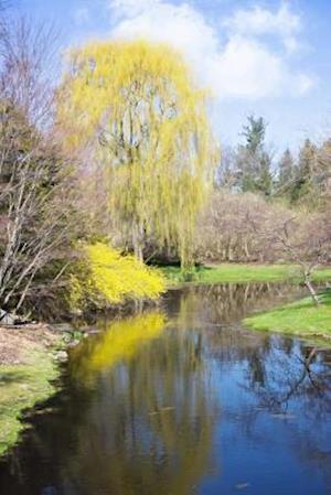 Springtime on the River Landscape Journal