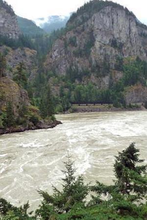 Bog, paperback The Fraser River in British Columbia, Canada af Unique Journal