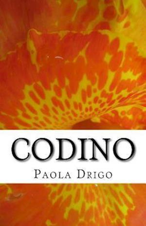 Bog, paperback Codino af Paola Drigo