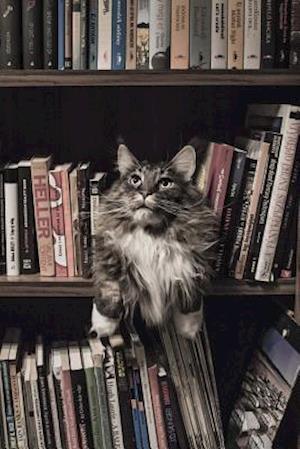 Bog, paperback Maine Coon Cat Guarding the Library af Unique Journal