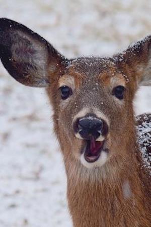 Bog, paperback Say Hello to the Whitetail Doe Journal (Deer) af Cool Image