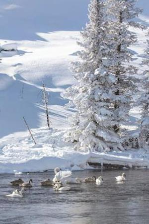 Bog, paperback Winter During Freeze at Yellowstone National Park Journal af Cool Image