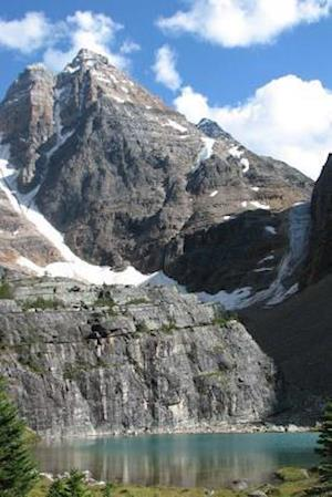 Bog, paperback Ringrose Peak in British Columbia, Canada af Unique Journal