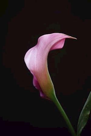 Bog, paperback Pink Calla Lily Portrait Journal af Cs Creations