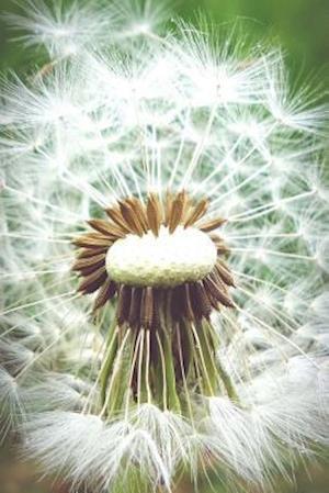 Dandelion Fluff Plant Journal