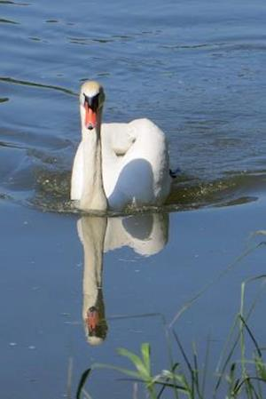 Bog, paperback Swan and Her Reflection in the Water Journal af Cs Creations