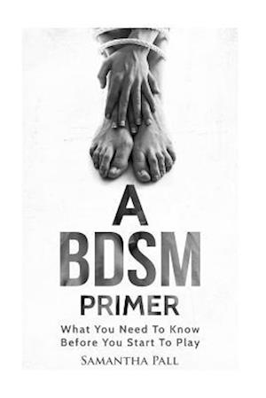 A Bdsm Primer