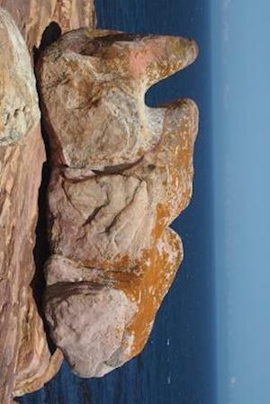 Bog, paperback Rhino Rock on the Coast af Unique Journal