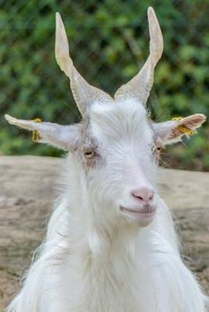 Bog, paperback Girgentana Goat Standing Tall, for the Love of Animals af Unique Journal