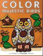 Color Majestic Birds
