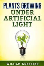 Plants Growing Under Artificial Light