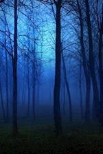 Blue Morning Mist in the Forest
