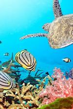 Butterfly Fish, a Sea Turtle, and Coral in the Ocean