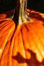 An Orange Pumpkin in Autumn Harvest Portrait Journal
