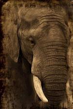 African Elephant Portrait Journal