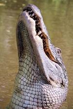 Alligator Portrait Journal