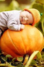 Baby Sleeping on a Pumpkin at the Pumpkin Patch Journal