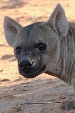 Hyena Portrait Journal