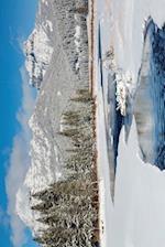 Icy Creek in Winter Journal