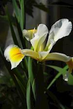Iris Flower Journal