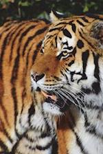 Tiger Portrait Journal