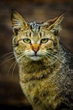 Wild Cat Portrait Journal