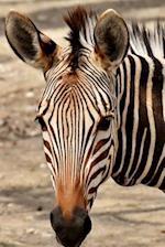 Zebra Portrait Journal