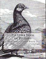 Fulton's Book of Pigeons