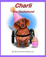 Charli the Dachshund