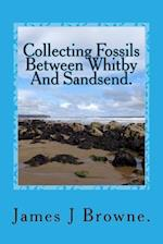 Collecting Fossils Between Whitby and Sandsend. af James J. Browne