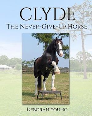 Bog, paperback Clyde af Deborah Young
