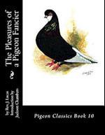 The Pleasures of a Pigeon Fancier
